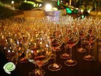 אשדוד אוהבת יין