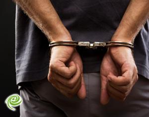 תושב אשדוד בן 38 שדד קשיש בן 85