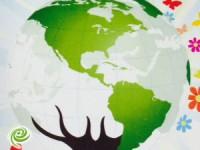 ירוקים חוגגים ארבע