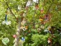 עץ המוצצים של ילדי אשדוד