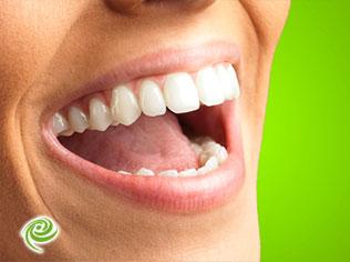 מדריך לצחצוח נכון ושמירה על בריאות הפה