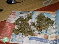 המשטרה עצרה בן 16.5 שמכר סמים לקטינים