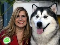 תערוכת כלבים תתקיים ב-16.5.15