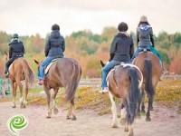 יתרונות רכיבה על סוסים