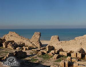 מצודת אשדוד ים מתעוררת לחיים