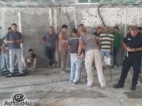 """לכידת שב""""חים בכמה אתרי בניה באשדוד"""