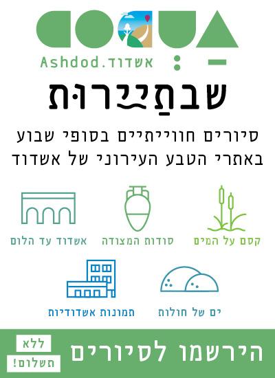 ashdod4u_celular_400*550_final