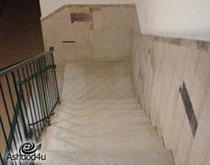 נפל במדרגות בגלל חתול, תובע רבע מיליון ₪ מוועד הבית