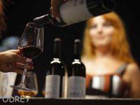 פסטיבל היין, לראשונה בפארק אשדוד ים