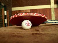 איך לשחק טניס שולחן גם אצלכם בבית?