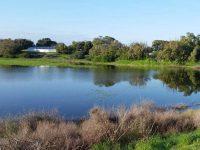האגם הזמני הנעלם של אשדוד