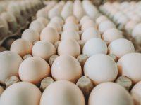 יש מצב לשקשוקה: מיליוני ביצים הגיעו מספרד