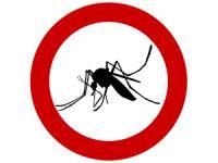 רשת נגד יתושים – לא צריך להמשיך לסבול