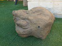 סלע הריגול שיצרו שני סטודנטים מ-SCE