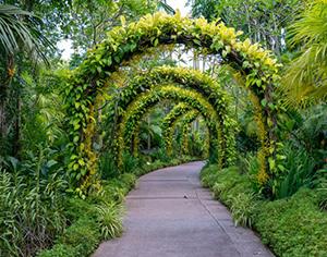 איך תמצאו את הגנן הכי מוכשר שישדרג לכם את הגינה